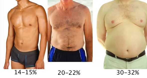 Male Body Fat Pictures and Percentages 15-30%